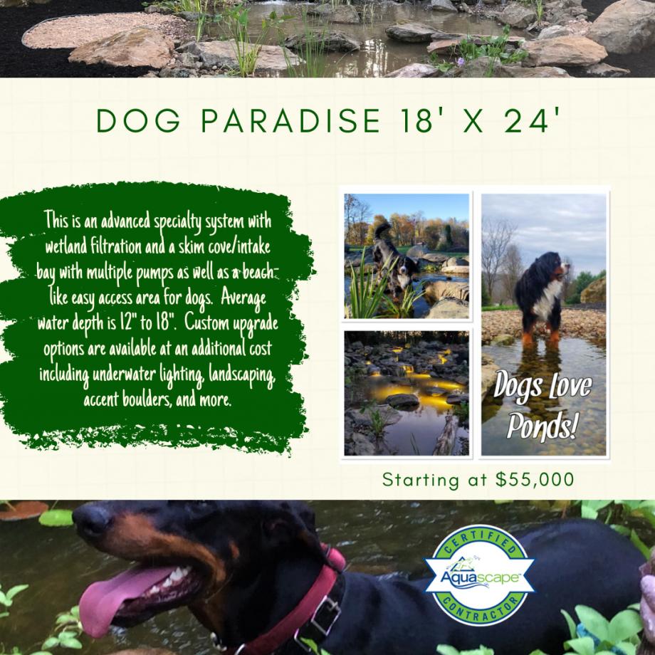 Kingdom Landscaping Dog Pond Wetland Filtration
