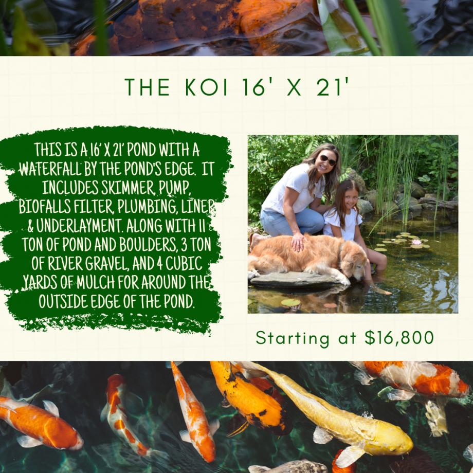 Kingdom Landscaping Pond Builder The Koi Aquascape Ecosystem Pond