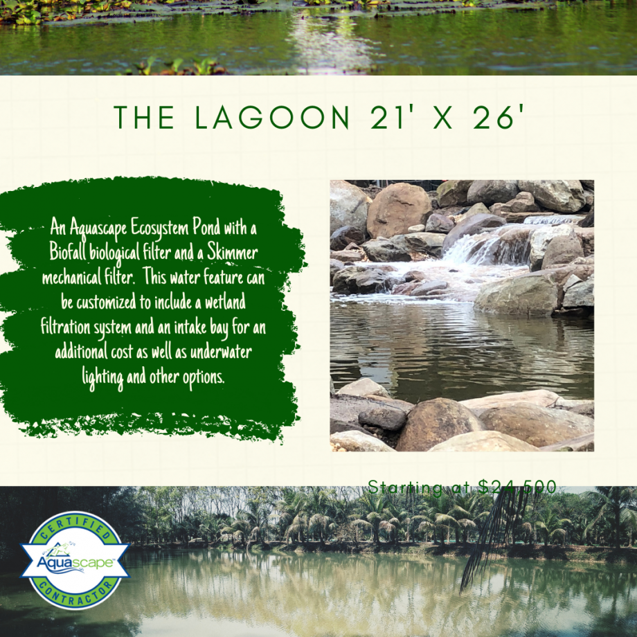 Kingdom Landscaping Pond Builder The Lagoon Aquascape Ecosystem Pond