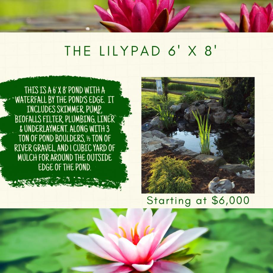 Kingdom Landscaping Pond Builder Aquascape Ecosystem Pond The LilyPad