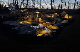 Kingdom Landscaping Pond Builder Dog Pond Aquascape Wetland Filtration LED Underwater Lighting Waterfalls Streams