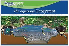 Aquascape Ecosystem | Kingdom Landscaping