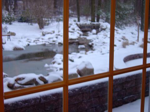 Tyler Winter Windows
